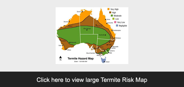 Click to view Termite Map